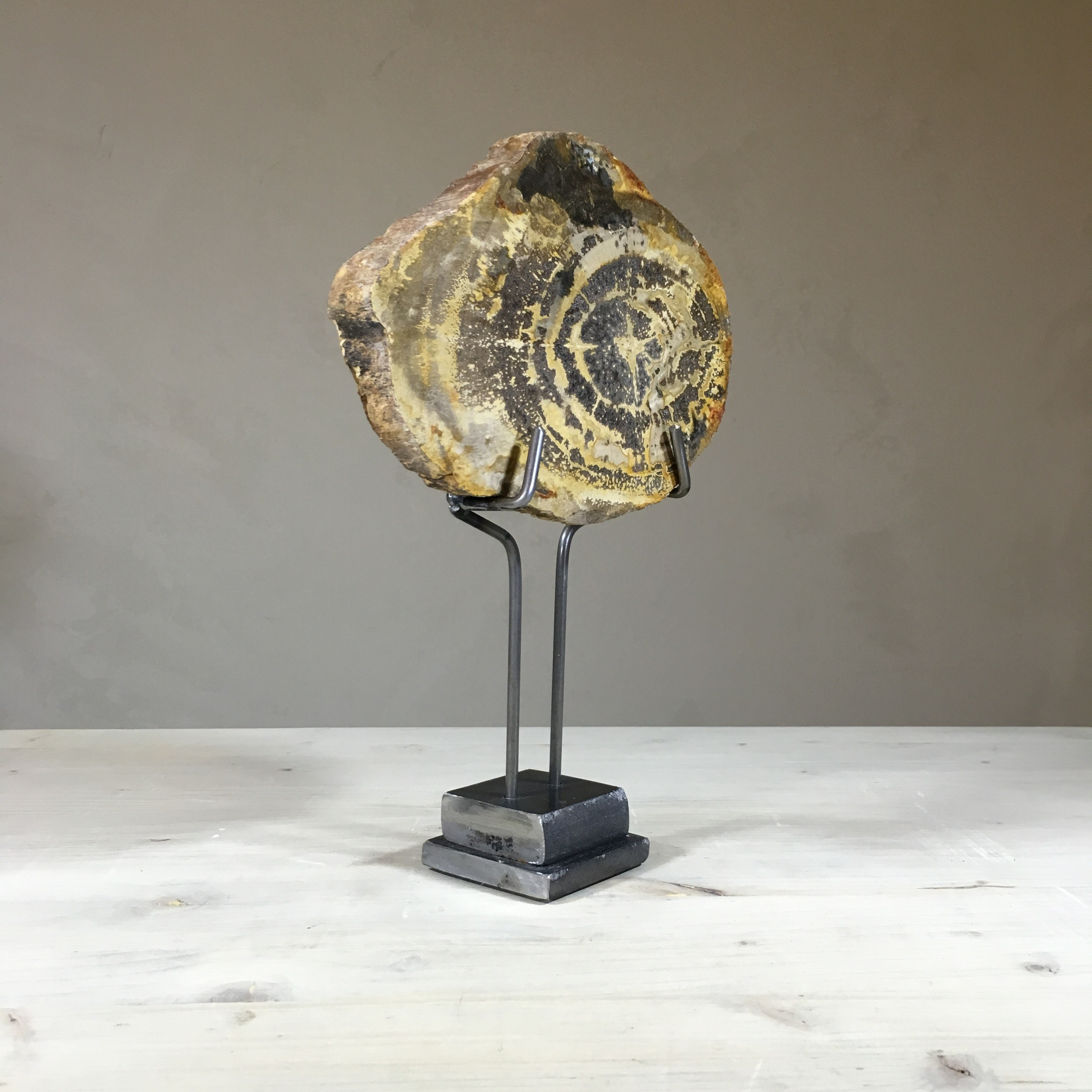 Cressida Wood Fossil With Stand Silver Pennies Jewelry